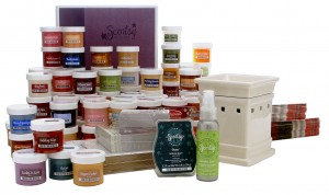 Scentsy Starter Kit Contents