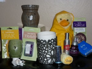 Scentsy Wickless Products