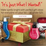 Scentsy Gifts for Sale - under $25