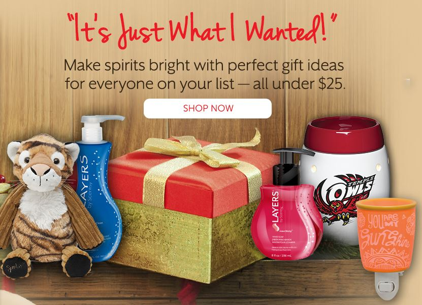 Scentsy Gift ideas for Sale for under $25
