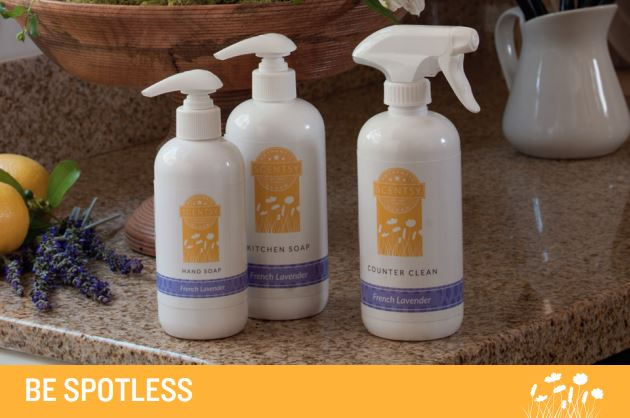Scentsy Cleaners Home Cleaner Amp Kitchen Soap The Safest