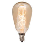 Edison Bulb $6