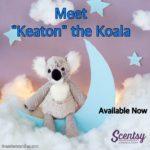 Keaton the Koala Bear Scentsy Buddy
