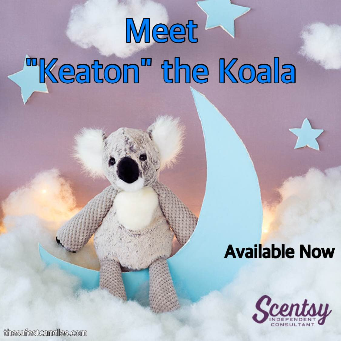 Our Newest Buddy Keaton the Koala Bear