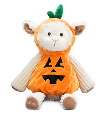 BUDDY CLOTHING PUMPKIN
